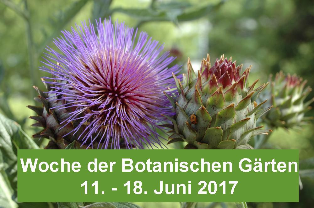 Woche Botanische Gärten 2017